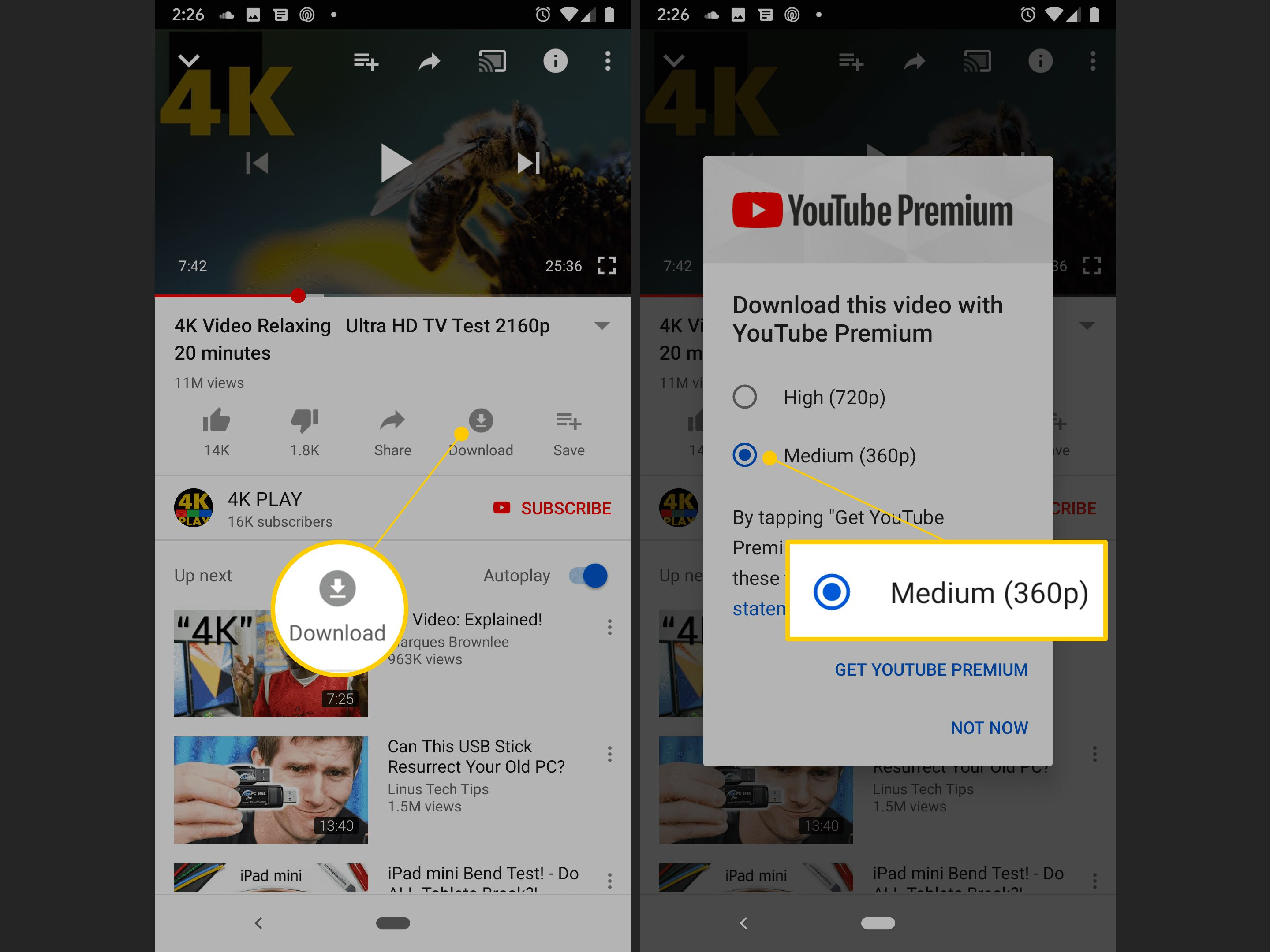 How to download a youtube video with premium